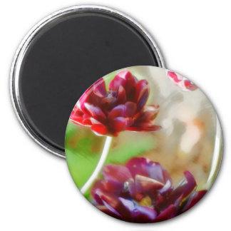 Imã Trio de florescência da tulipa da peônia escura do