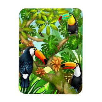 Ímã tropical dos pássaros de Toucan