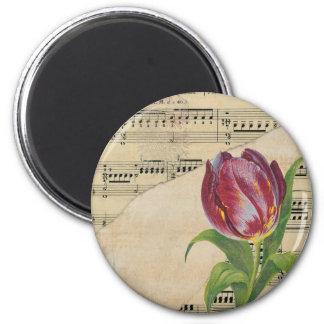 Imã Tulipas do romance da música do Victorian do