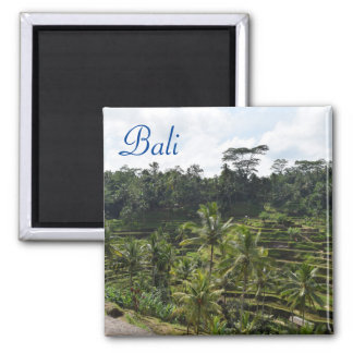Imã Ubud Bali