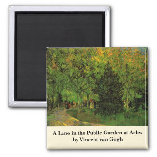 Imã Van Gogh uma pista no jardim público em Arles