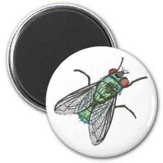 Imã verde da mosca - um olhar realístico do embroide