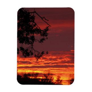Ímã vermelho do por do sol e do carvalho