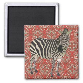 Ímã vermelho retro da zebra ímã quadrado