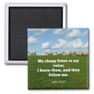 Imã Verso da bíblia, 10:27 de John, meu carneiro…