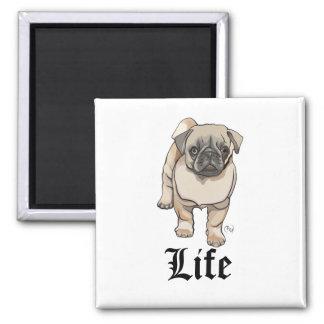 Imã Vida do Pug - ímã engraçado da chalaça