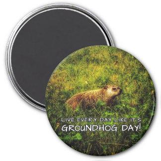 Imã Vive cada dia como é dia de Groundhog! ímã
