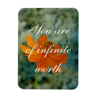 Ímã você é do valor infinito