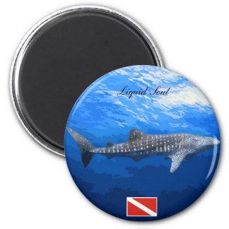 Imã Whale Shark Magnets