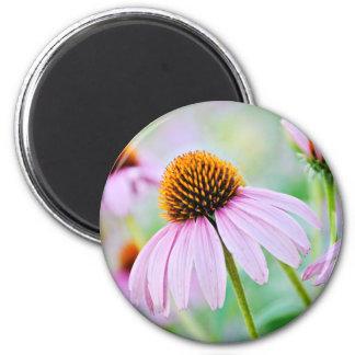 Imã Wildflowers roxos