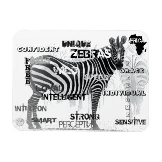 Ímã Zebras originais
