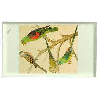 imagem 1878 do naturalista de parakeets suportes para cartão de mesa