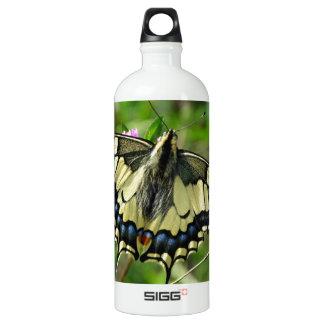 Imagem bonita da borboleta