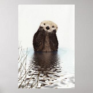 Imagem bonito dos animais selvagens da lontra poster