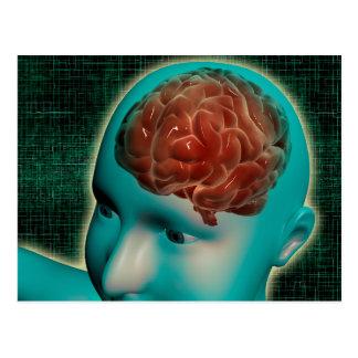 Imagem conceptual do corpo fêmea com cérebro 1 cartoes postais