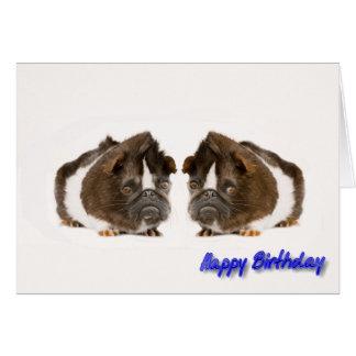 Imagem da cobaia para o cartão do aniversário