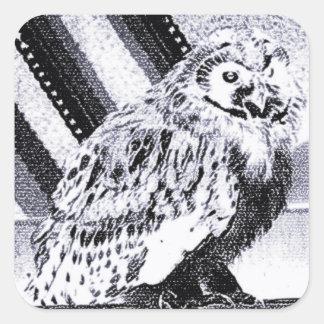 Imagem da coruja adesivo em forma quadrada