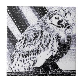 Imagem da coruja azulejo quadrado pequeno