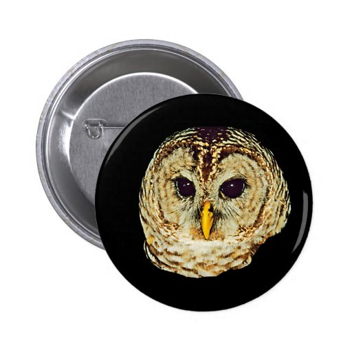 Imagem da coruja boton