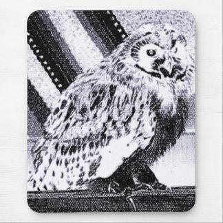 Imagem da coruja mouse pad