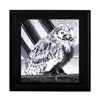 Imagem da coruja porta treco