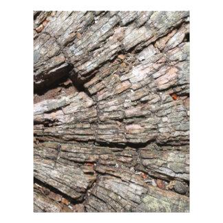 Imagem da madeira velha do coto de árvore flyer 21.59 x 27.94cm