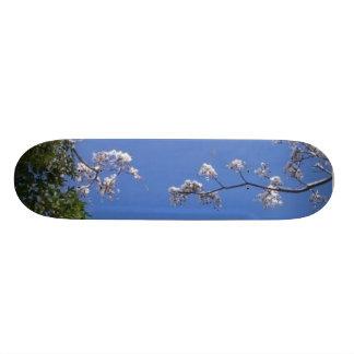 Imagem da neve shape de skate 18,1cm