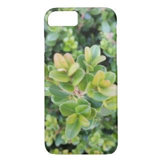 imagem da planta em capas de iphone