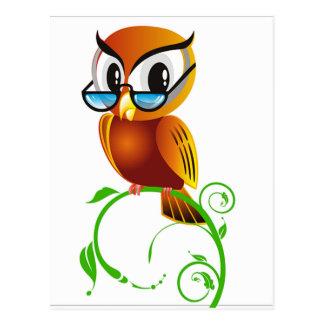 imagem de coruja cartão postal
