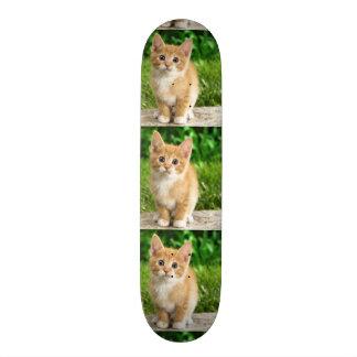 imagem de gatinho shape de skate 18,1cm