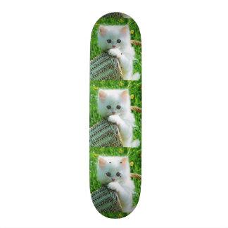 imagem de gatinho skates personalizados