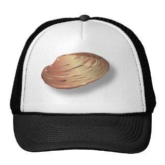Imagem de Shell dos moluscos Boné