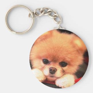 imagem de um cãozinho chaveiros