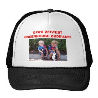 imagem do chapéu, AMIGOS da ESTUFA do BESTEST de O Boné
