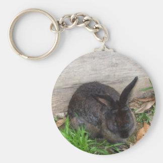 Imagem do coelho chaveiro