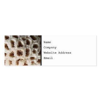 Imagem do coral cartão de visita skinny