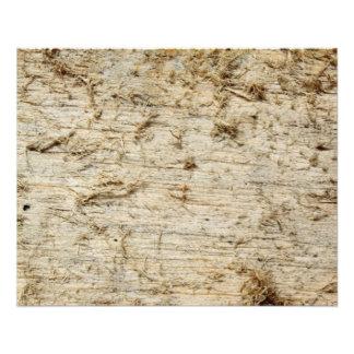 Imagem do Driftwood. Flyer 11.43 X 14.22cm