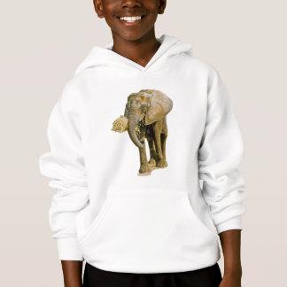 Imagem do elefante