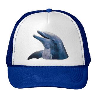 Imagem do golfinho boné