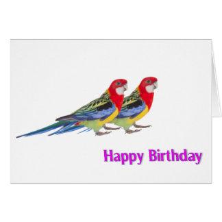 Imagem do papagaio para o cartão do aniversário
