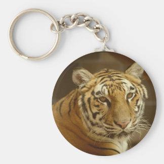 Imagem do tigre chaveiro