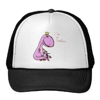 imagem engraçada de um dinossauro cor-de-rosa TeaR Boné