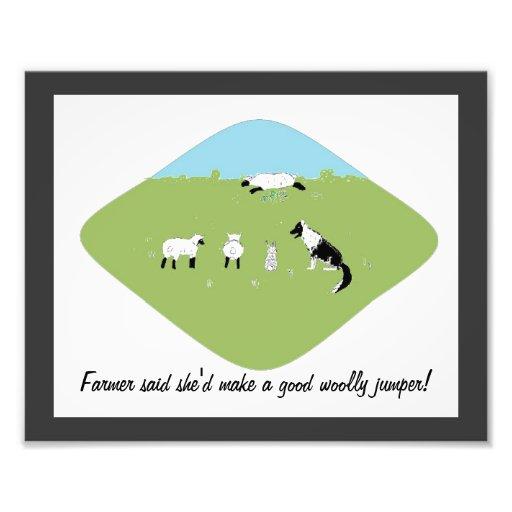 Imagem engraçada dos carneiros foto arte