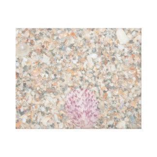 imagem esmagada lavada da praia do scallop dos esc impressão em tela
