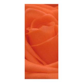 Imagem floral Rackcard do rosa do pêssego 10.16 X 22.86cm Panfleto