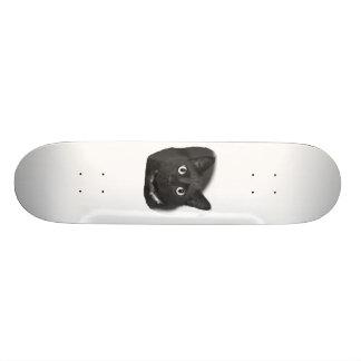 Imagem grande de BW dos olhos do gato cinzento Shape De Skate 18,4cm