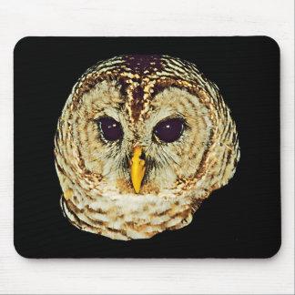 Imagem Mousepad da coruja