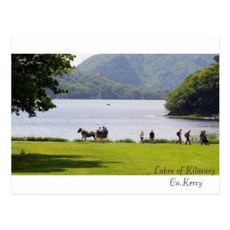 Imagens irlandesas para o cartão