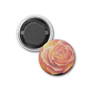 Íman flor de rosa ímã redondo 2.54cm