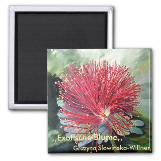 Íman, flor Exótica, Ímã Quadrado